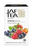 JAFTEA Black Forest Fruit 20x1,5g sáčků